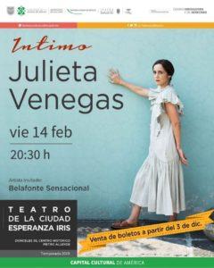 Julieta Venegas en el Teatro de la Ciudad flyer